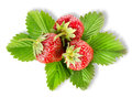 Heap strawberry isolated Stock Image