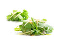 Heaps of rucola salad with parmesan and balsamic vinegar isolat Royalty Free Stock Photo