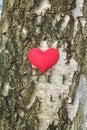 Heart on birchbark Royalty Free Stock Photo