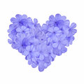 Heart with blue flower shape light Stock Photos