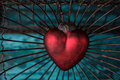 Heart in cage red trapped inside an old rusty bird Stock Image