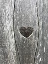 Heart carved in wood Royalty Free Stock Photo