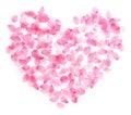 Heart cherry blossom Royalty Free Stock Photo