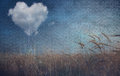 Heart cloud over field grunge textured heavy texture Stock Photography