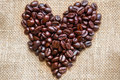 The heart of coffee beans.