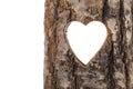 Heart cut in hollow tree trunk.