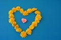 Heart of dandelions Royalty Free Stock Photo