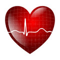 Heart electrocardiogram red symbol isolated Stock Photos