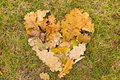 Heart of fallen leaves Royalty Free Stock Photo