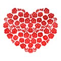 Heart with flowers isolated Royalty Free Stock Photo