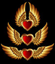 Heart forms with golden wings Stock Image