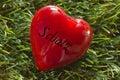 Heart on grass darling Stock Photos