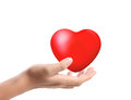 Heart in the hands isolated Stock Image