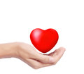 Heart in  hands isolated Stock Photo