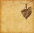 Heart hanging on branch vintage paper with Stock Photography