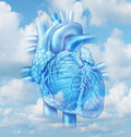 Heart health medical concept with a human cardiovascular body part from a healthy person on a sky background as a medical symbol Royalty Free Stock Image
