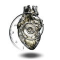 Heart human gears and time spirial Stock Photos