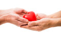 Heart at the human hands red isolated on white Stock Photography