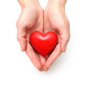 Heart at the human hands red isolated on white Royalty Free Stock Photo