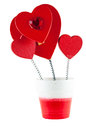 Heart imitation of flowers isolated on white background with clipping path Stock Photo