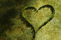 Heart landscaping original green background lovely Royalty Free Stock Photography