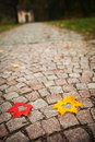 Heart leaves on cobblestone Royalty Free Stock Image
