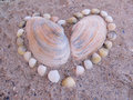 Heart made ​​of shells on the sand Royalty Free Stock Photo