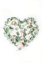 Heart made with beige roses and green leaves isolated on white background Royalty Free Stock Photo