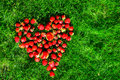 Heart made of strawberries on a green lawn