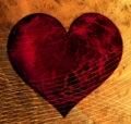 Heart in net