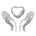 Heart in open female human palms. Vector black vintage