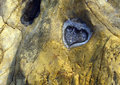 Heart on an orange rock Royalty Free Stock Photo