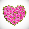 Heart of pink roses Stock Image