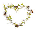 Heart shape from cherry tree flowers and bees on white Royalty Free Stock Photo