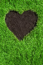 Heart shape in the lawn Stock Photography