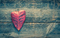 Heart shape leaf on wood background with retro filter effect Stock Photography
