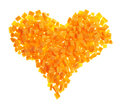 Heart shape made of carrot pieces Royalty Free Stock Images
