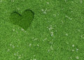 Heart shape made of mowed grass and flowers on a spring meadow with copy space concept design Stock Image