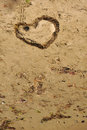 Heart shape made of seaweed on beach Royalty Free Stock Photo
