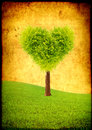 Heart shape tree on green field Royalty Free Stock Photos