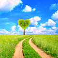 Heart shape tree on green field Royalty Free Stock Photography