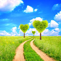 Heart shape trees on green field Royalty Free Stock Image
