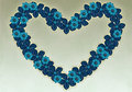 Heart-shaped blue flowers. Royalty Free Stock Image