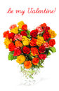 Heart shaped bouquet of colorful assorted roses in a vase on white background with sample text be my valentine card concept Royalty Free Stock Photography