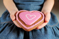 Heart shaped cookies Stock Images