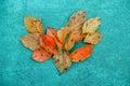 Heart shaped fallen trees Royalty Free Stock Photo