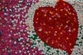 Heart shaped flower wall Royalty Free Stock Photo
