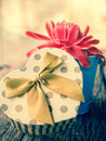 Heart shaped gift box with flower valentines day Stock Photography