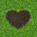 Heart-shaped grass. Royalty Free Stock Photos