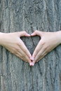 Heart shaped hands Royalty Free Stock Photo
